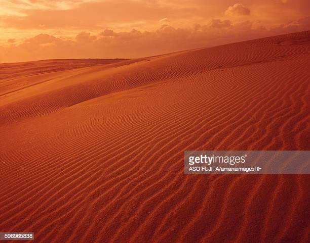 tottori sand dunes, tottori prefecture, japan - tottori prefecture stock photos and pictures