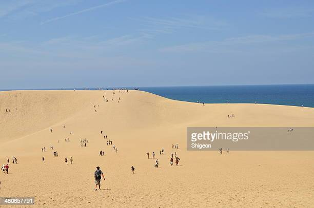 tottori sand hill - tottori prefecture stock pictures, royalty-free photos & images