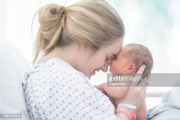 touching foreheads - mother stock pictures, royalty-free photos & images