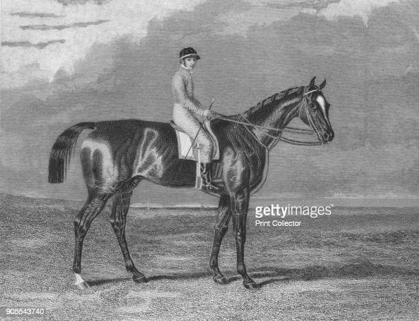 'Touchstone' 18311861 From British Sports and Sportsmen Part 1 [British Sports and Sportsmen London 1911] Artist Unknown
