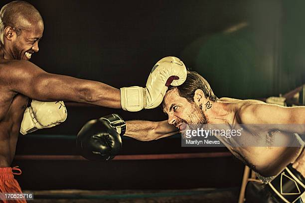 tough guy - funny boxing stock photos and pictures