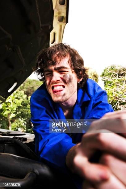 tough nut - car lubricants 個照片及圖片檔