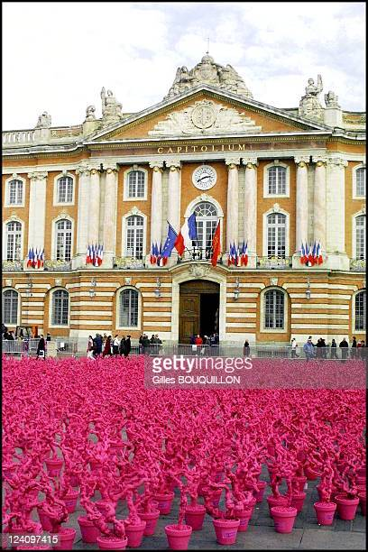 Toulouse a giant heart formed by 5000 potted pink wine vine stocks on the place of Capitole for 'Vendange du coeur pour les sinistres' In Toulouse...