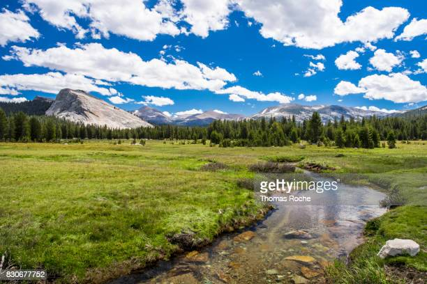 Toulumne Meadows in Yosemite National Park