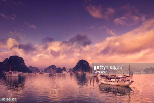 Tour boats in Halong Bay