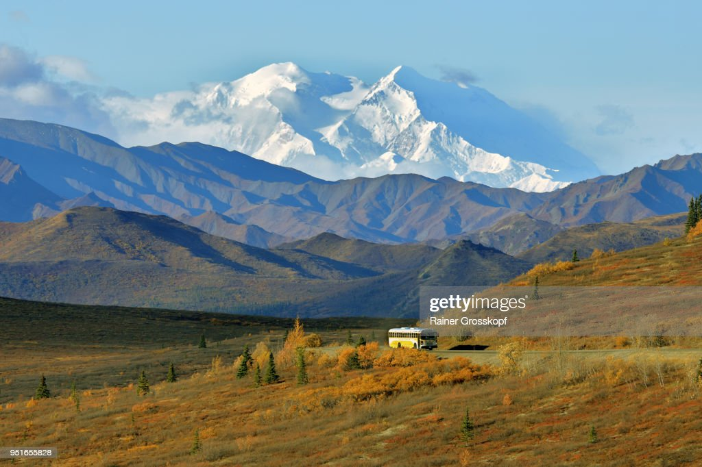 Tour bus driving through an autumn landscape with Mount Denali in background : Stock-Foto