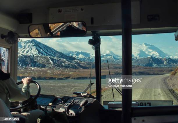 tour bus in denali national park and preserve - coach bus stock photos and pictures