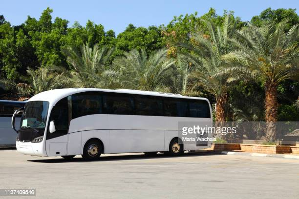 tour bus - bus stock pictures, royalty-free photos & images