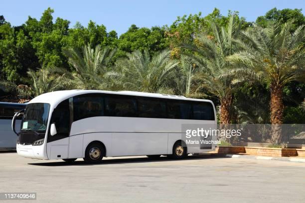tour bus - coach bus stock photos and pictures