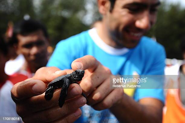 CONTENT] Tour de Singkarak riders concerned about preservation of sea turtles in Indonesia 220 riders from 21 team release 300 baby sea turtles back...