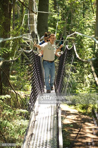 Tour guide leads a group across the Greenheart Canopy Walkway at UBC Botanical Garden on the campus of the University of British Columbia. The...