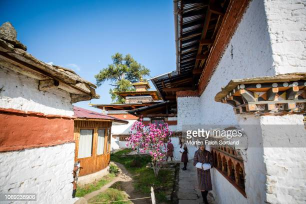tour guides at kyichu lhakhang temple, bhutan springtime - paro district stock pictures, royalty-free photos & images