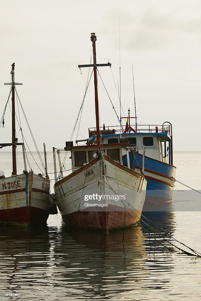 Tourboats anchored at the port, Taganga Port, Taganga Bay, Magdalena, Colombia : Stock Photo