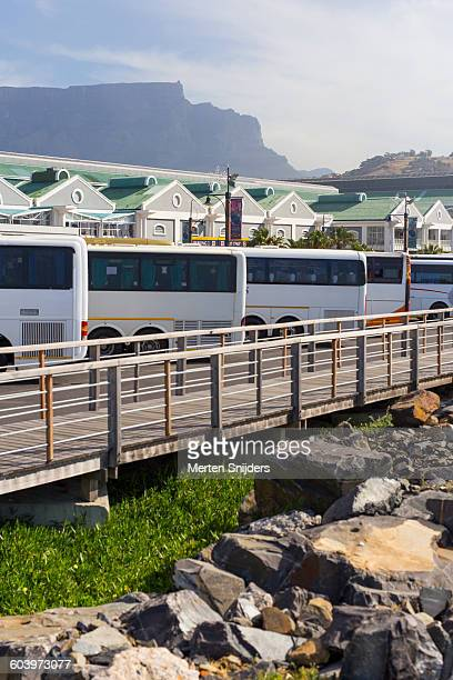 tourbusses and table mountain - merten snijders stockfoto's en -beelden