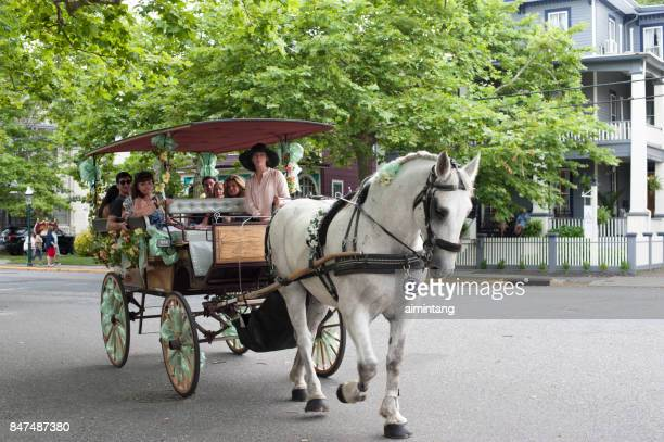 touring cape may in horse-drawn carriage - cape may stock pictures, royalty-free photos & images