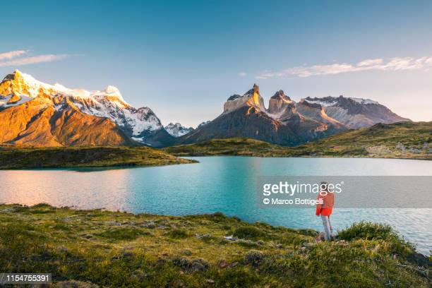tourist admiring the cordillera paine in torres del paine national park, chile - torres del paine national park stock photos and pictures