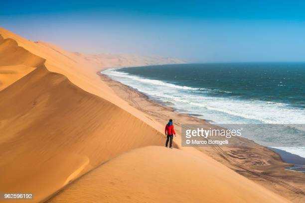 tourist admiring the ocean from the top of a sand dune - namib naukluft national park stock pictures, royalty-free photos & images