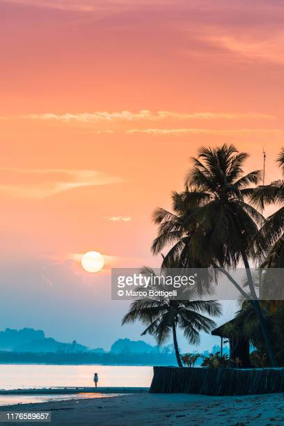 tourist admiring the sunrise on tropical island - tourist resort stock pictures, royalty-free photos & images
