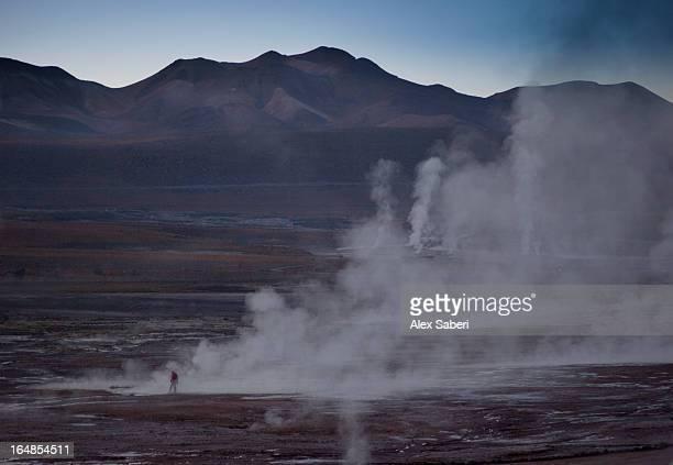 a tourist among the el tatio geysers, atacama desert, at sunrise. - alex saberi fotografías e imágenes de stock