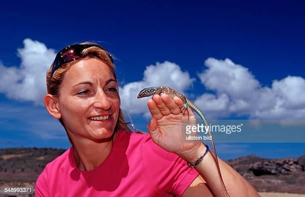 Tourist and Blue whiptail lizard Cnemidophorus murinus ruthveni Netherlands Antilles Bonaire Bonaire Washington Slagbaai National Park Boka Chikitu