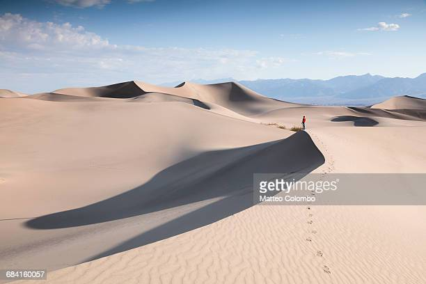 tourist at mesquite sand dunes, death valley, usa - ver stockfoto's en -beelden