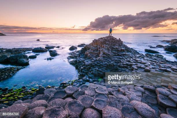 tourist at the giant's causeway, northern ireland. - northern ireland stock photos and pictures