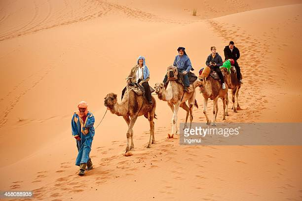 tourist camel safari in sahara desert - merzouga stock pictures, royalty-free photos & images