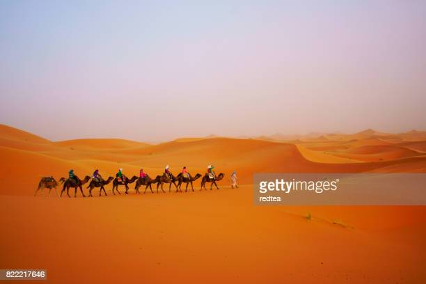 Tourist camel safari in Sahara desert