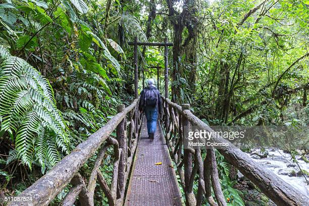 Tourist crossing a bridge in the tropical forest of Costa Rica