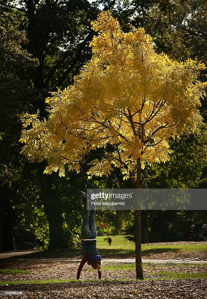 A tourist does a handstand under a yellowing tree in Hyde Park on October 12, 2012 in London, England. Autumnal colours are beginning to show in parts of the United Kingdom.