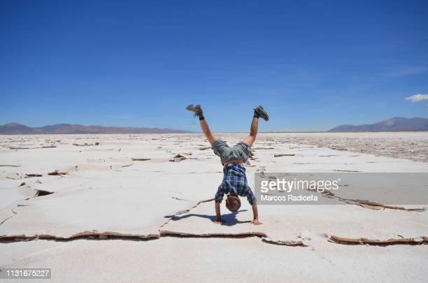 tourist enjoying puna desert, argentina. - radicella stock-fotos und bilder
