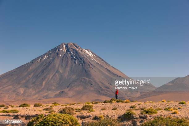tourist enjoying the chilean landscape. - altiplano stock pictures, royalty-free photos & images