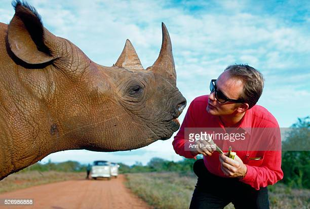 A tourist feeds a tame rhinoceros at the Tsavo National Park in Kenya