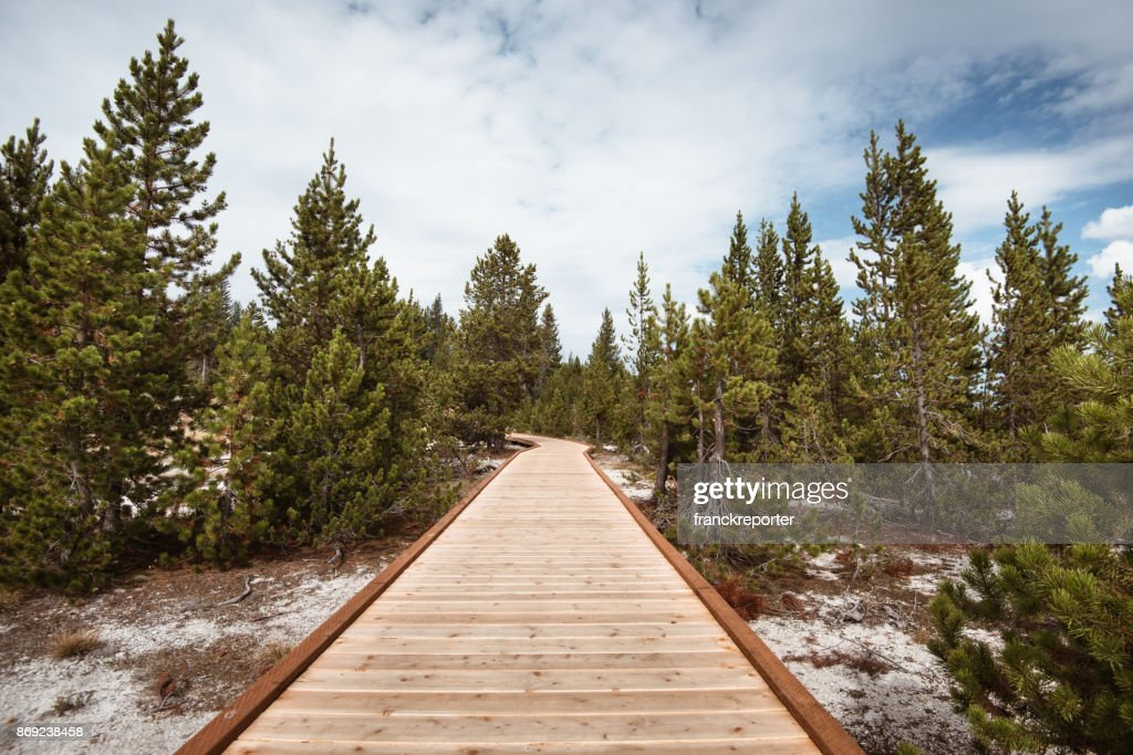 tourist footopath at the yellowstone national park : Stock Photo