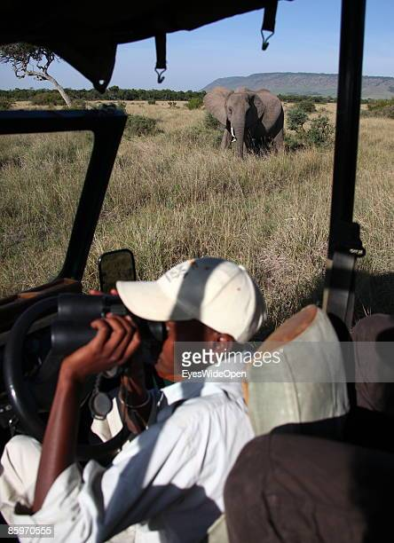 A tourist guide in a safari jeep with tourists watching elephants on March 20 2009 in Masai Mara National Park Nairobi Kenya Named of the local...