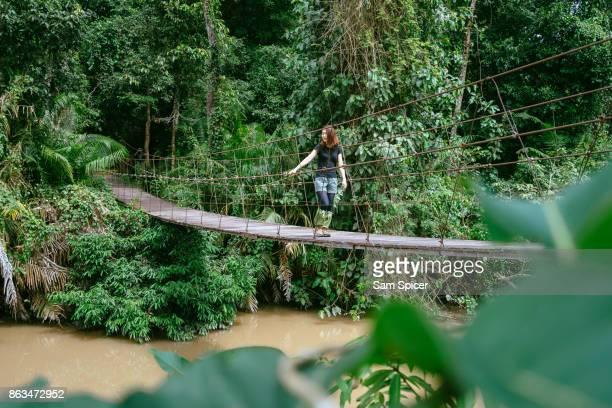 Tourist hiking at Khao Yai National Park, Thailand