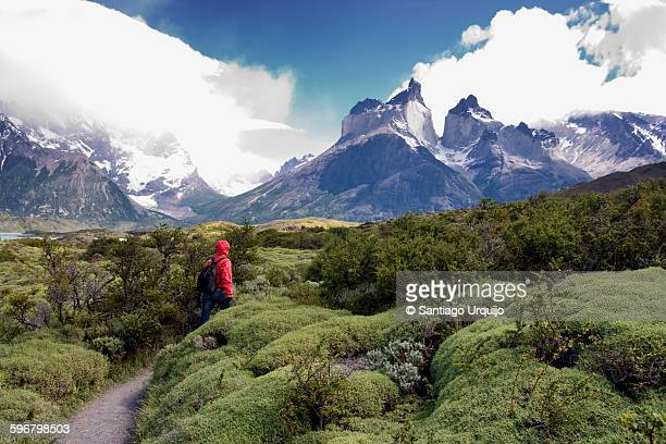 tourist hiking in torres del paine national park - torres del paine national park stock photos and pictures