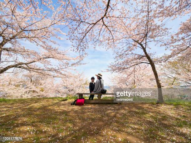 tourist in spring time japan. - wide shot stock pictures, royalty-free photos & images