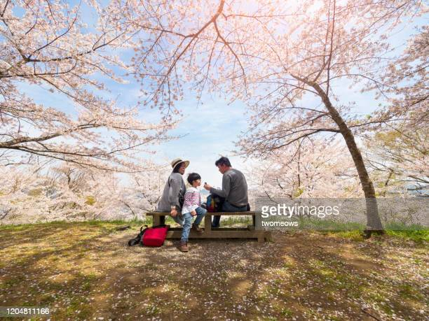tourist in spring time japan. - picnic stock pictures, royalty-free photos & images