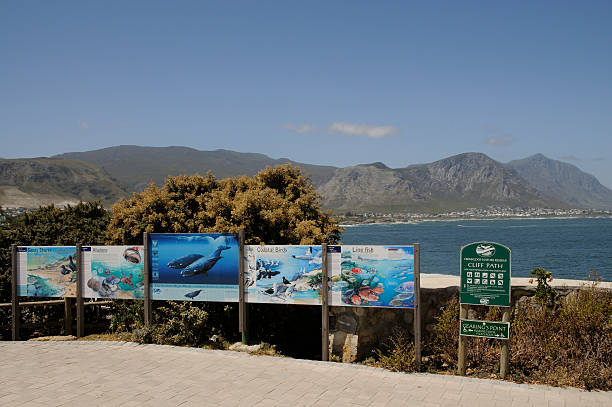 Tourist Information Boards