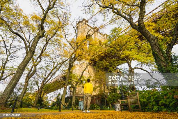 tourist looking at brooklyn bridge in a public park in autumn, new york city - brooklyn new york stock pictures, royalty-free photos & images