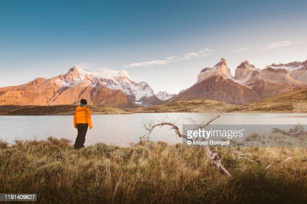 tourist looking at view in torres del paine national park, chile - dramatic landscape stock pictures, royalty-free photos & images