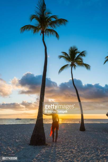 tourist on a palm-fringed beach watching sunrise. dominican republic. - punta cana fotografías e imágenes de stock
