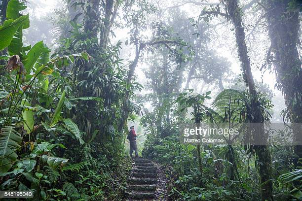 Tourist on a track in the Monteverde Cloud Forest, Costa Rica