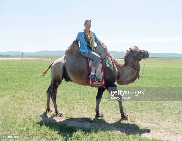 Tourist on Bactrian Camel in Grasslands near Xiwuqi Inner Mongolia China.