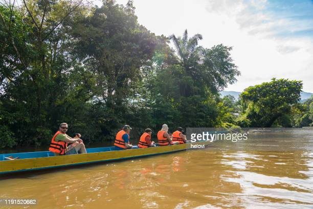 tourist on melinau river to clearwater cave, borneo - tropical tree stock pictures, royalty-free photos & images