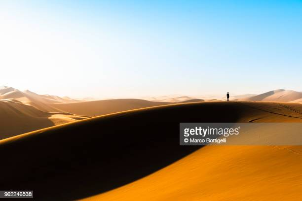 Tourist on top of a sand dune