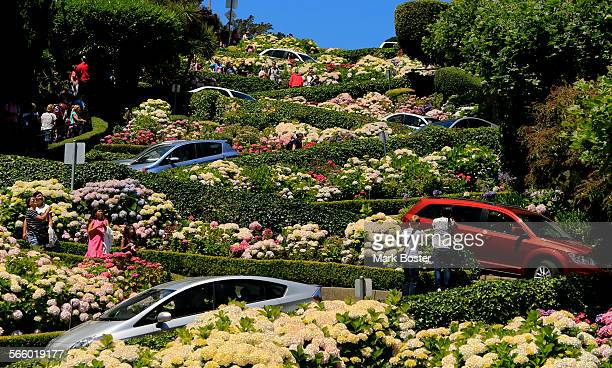 Tourist pamphlets describe Lombard Street in San Francisco as the crookedest street while cars zigzag down the sharp turns past perfectly landscaped...