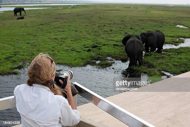 Tourist photographer on safari in Africa