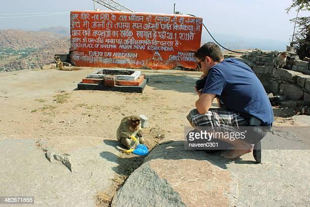 観光客の写真撮影、猿